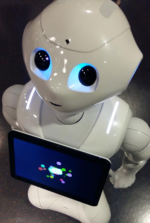 menschenähnliche roboter vor und nachteile